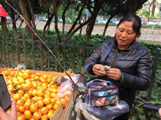 Couleurs et saveurs au marché de Kunming...