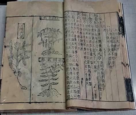 Médecine traditionnelle chinoise à Hangzhou